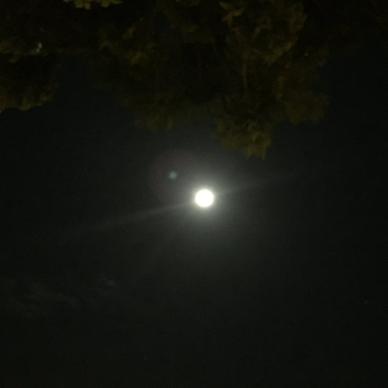 full-moon-christmas-day-2015